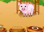 Ferme aux cochons