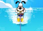 Ski nautique dog