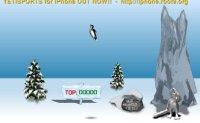 Yeti Pingu Throw